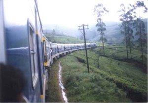 Train-1.0