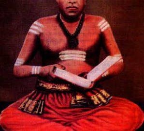 நல்லூரும் நாவலரும் – பதின்னான்காம் திருவிழா