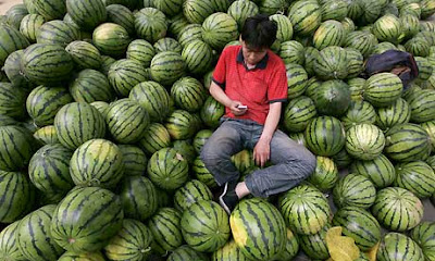 Watermelon-vendor-uses-hi-001